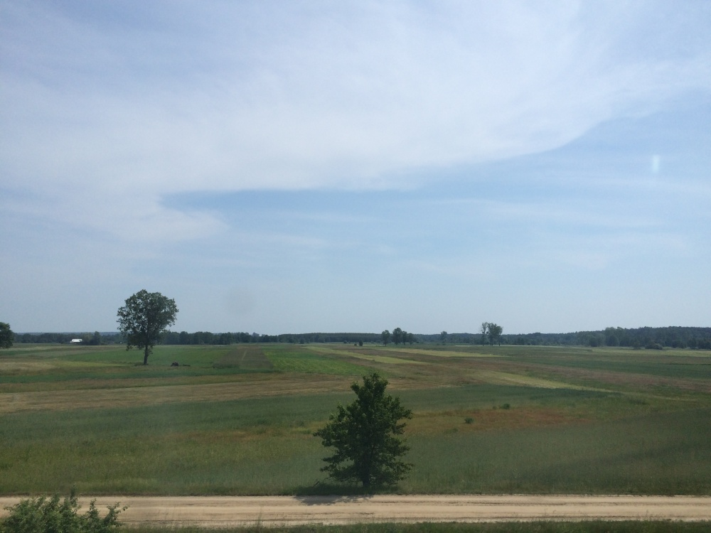 ポーランドの田園風景_2
